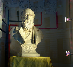 Bust of Darwin by helen.2006 on Flickr click to enlarge
