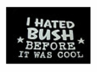 I hated Bush before it was cool